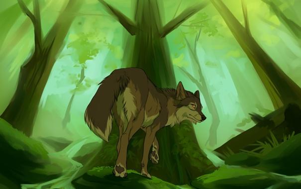 Фото обои лес, трава, деревья, волк, ручейки