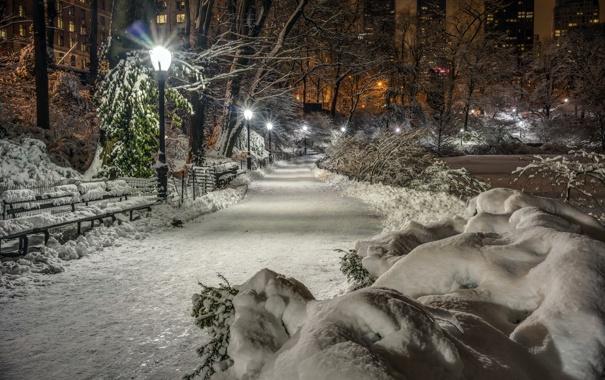 Фото обои зима, снег, деревья, ночь, огни, парк, Нью-Йорк
