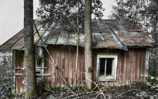 Фото обои дом, стиль, фон, дерево