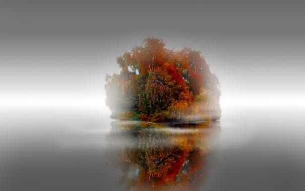 Фото обои осень, деревья, туман, озеро, остров