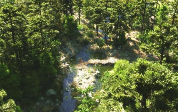 Фото обои лес, деревья, река, ручей, камни, арт, вид сверху