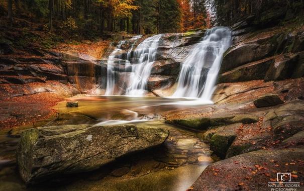 Фото обои осень, лес, пейзаж, природа, река, краски, водопад