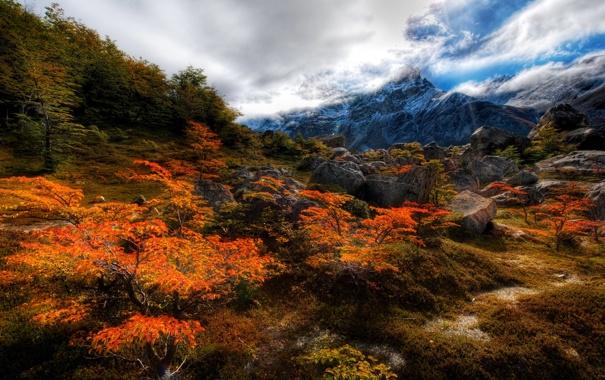 Фото обои осень, облака, деревья, горы, камни., nature, Чили