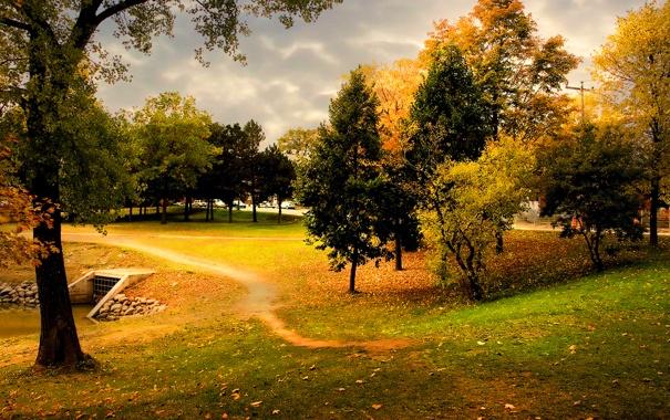 Фото обои осень, небо, трава, деревья, тучи, природа, листва