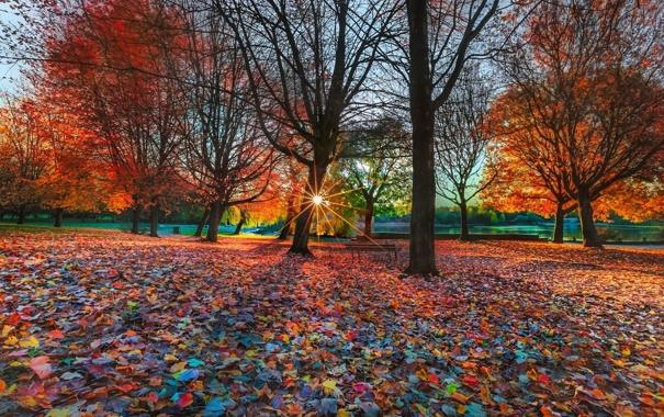 Скамейка осень парк