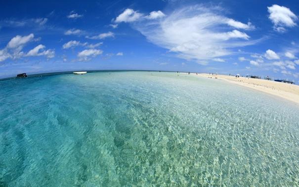Фото обои пляж, люди, Океан