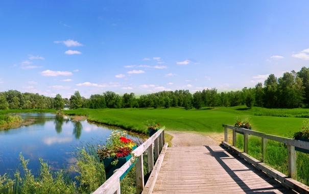 Фото обои поле, небо, мост, река