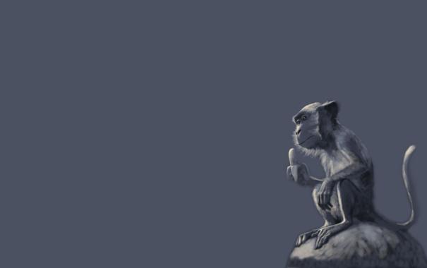 Фото обои обезьяна, синий, сидит, банан, камень, monkey, минимализм