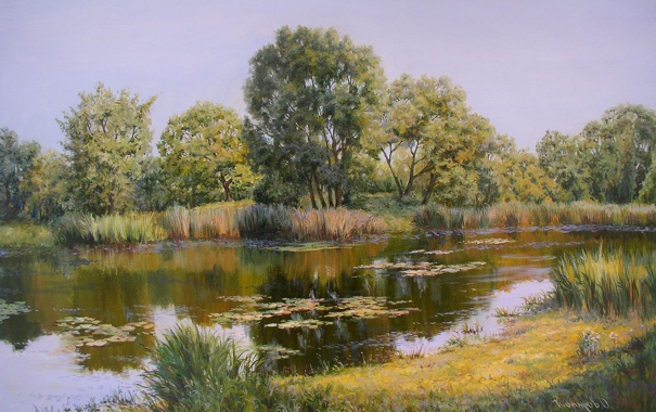 Фото обои вода, деревья, пейзаж, отражение, берег, Картина, ряска