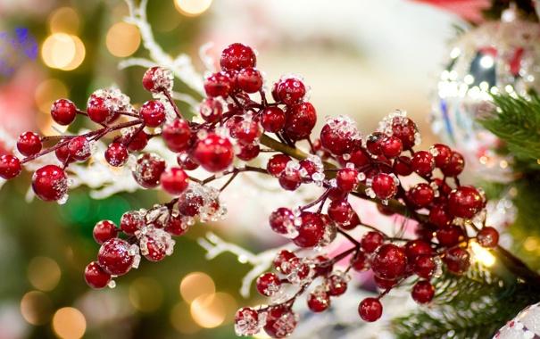 Фото обои зима, праздник, игрушки, елка, ветка, Новый Год, Рождество