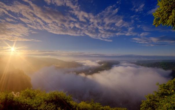 Фото обои лето, туман, река, утро, германия, Saarschleife