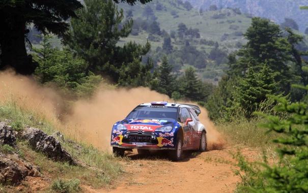 Фото обои Лес, Поворот, Капот, Занос, Citroen, DS3, WRC