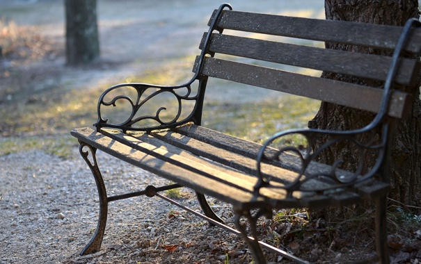 Фото обои скамейка, фото, города, дерево, настроение, улица, лавочка