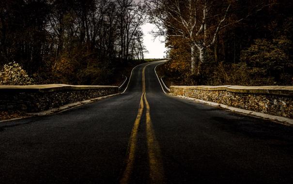 Фото обои дорога, мост, природа