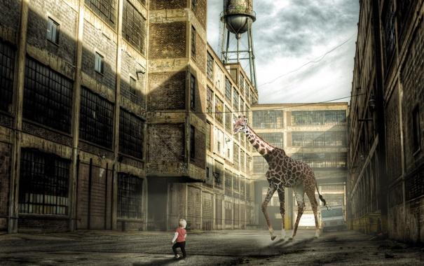 Фото обои ситуация, мальчик, монтаж, жирафа