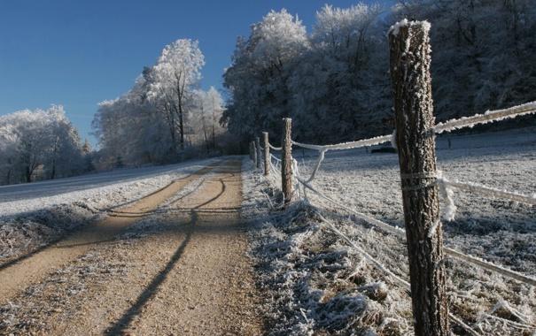 Фото обои зима, иней, дорога, снег, деревья, природа