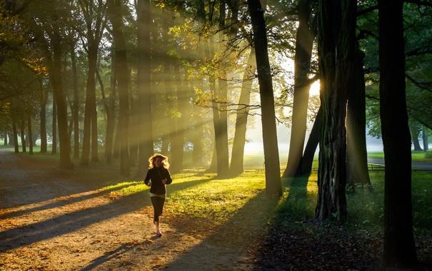 Фото обои город, парк, утро, пробежка