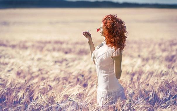 Фото обои цветочек, поле, лето, солнце, рыжеволосая девушка