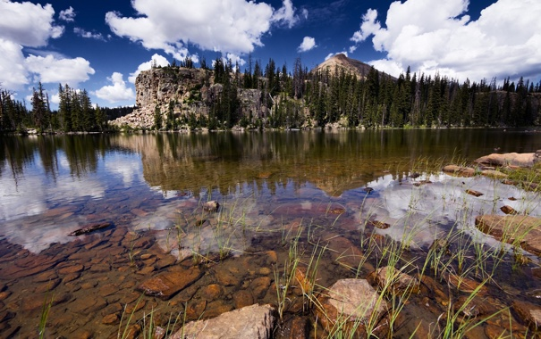 Фото обои лес, небо, облака, река, камни