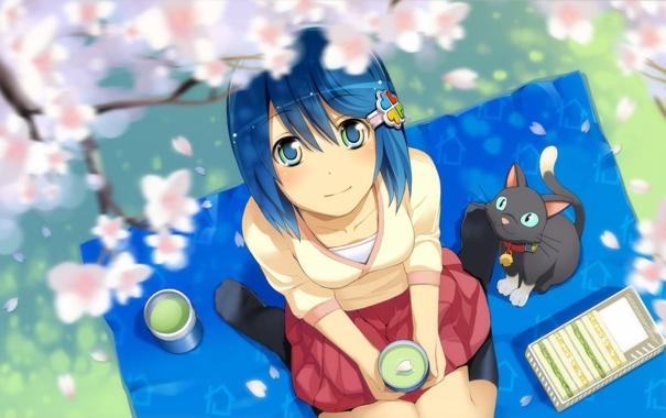 Фото обои кошка, сакура, девочка, розовые, пикник, лепески, Cherry blossom
