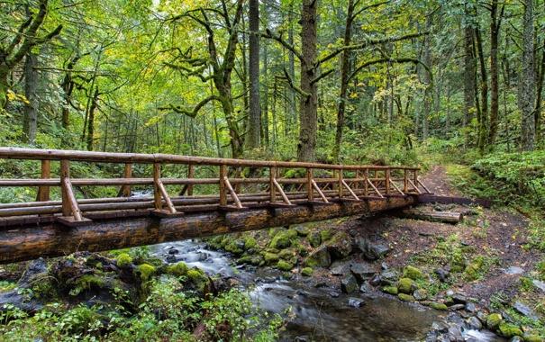 Фото обои пейзаж, мост, парк, река