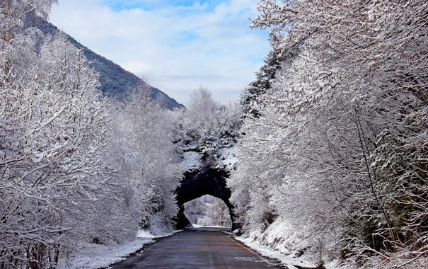 Фото обои дорога, снег, деревья, пейзаж