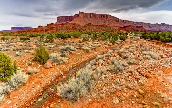 Фото обои небо, горы, камни, скалы, растения, сша, юта