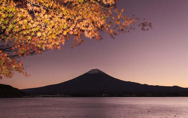 Фото обои осень, небо, листья, мост, озеро, гора, ветка