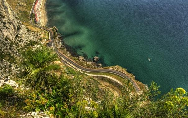 Фото обои дорога, море, природа, скала, пальмы, побережье, Gibraltar