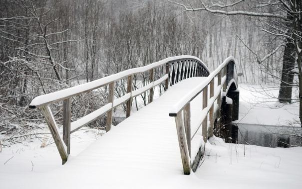 Фото обои холод, зима, деревья, мост, парк, заснеженный, Snowbound bridge