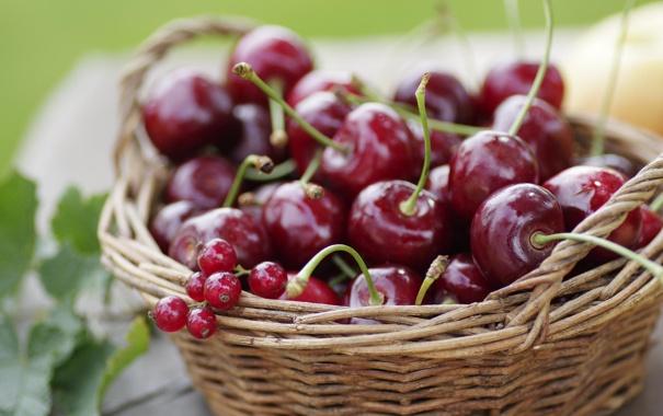 Фото обои корзина, лето, вишня, смородина, фрукты, ягоды, черешня