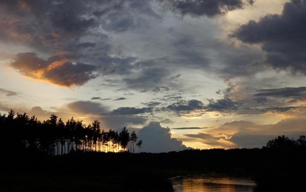 Фото обои деревья, пейзаж, закат, вечер