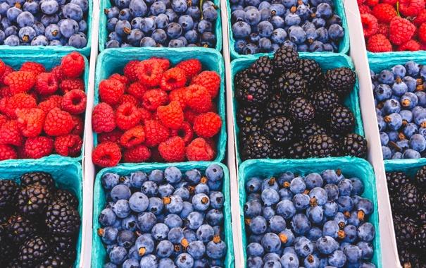 Фото обои blackberry, black, california farmers market, raspberry, berries, blue, santa monica