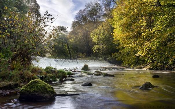 Фото обои Water of Leith, Colinton Dell, Bonny Scotland, Morning Light