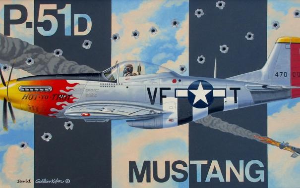Фото обои Mustang, истребитель, P-51D, одноместный
