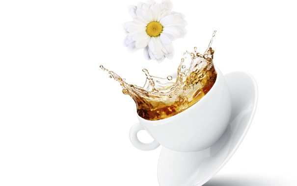 Фото обои цветы, брызги, чай, чашка, flowers, Cup, tea