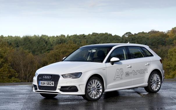 Фото обои белый, фото, Audi, Ауди, автомобиль, e-tron, Sportback