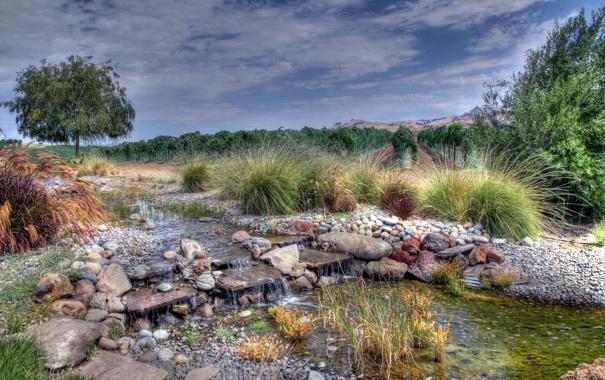 Фото обои поле, лето, деревья, природа, ручей
