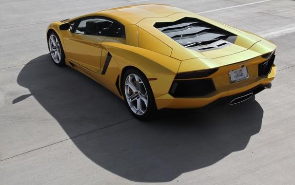 Фото обои жёлтый, тень, lamborghini, вид сзади, yellow, aventador, lp700-4