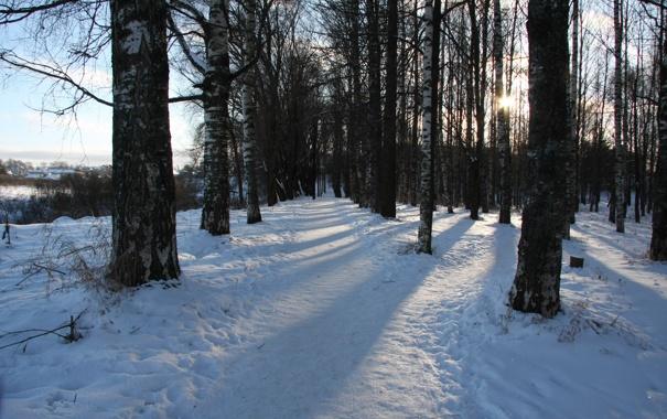 Фото обои зима, дорога, лес, солнце, снег, пейзаж, природа