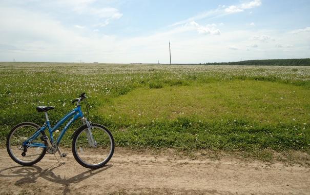 Фото обои дорога, поле, лето, небо, трава, велосипед, одуванчики