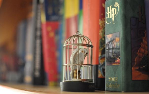 Фото обои сова, клетка, Гарри Поттер