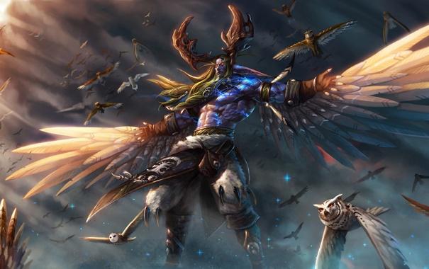 Фото обои небо, звезды, крылья, маг, WoW, Stormrage, совы