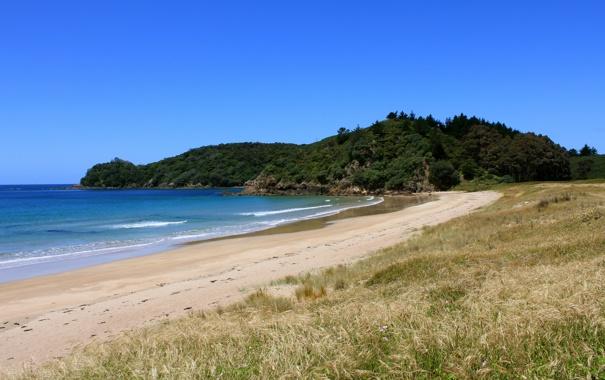 Фото обои волны, зелень, трава, вода, озеро, берег, холм