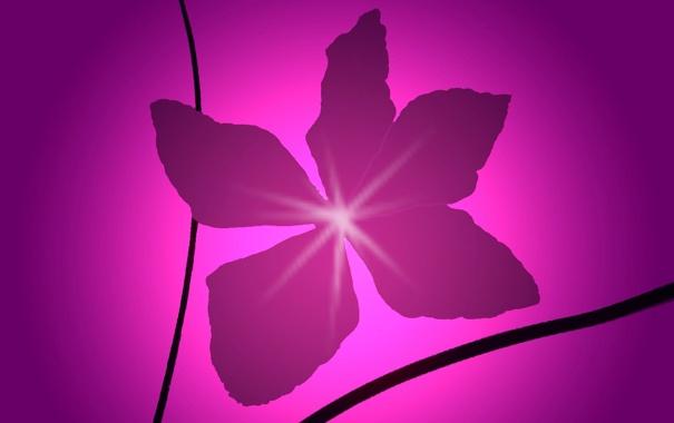 Фото обои цветок, свет, абстракция, краски, минимализм, лепестки
