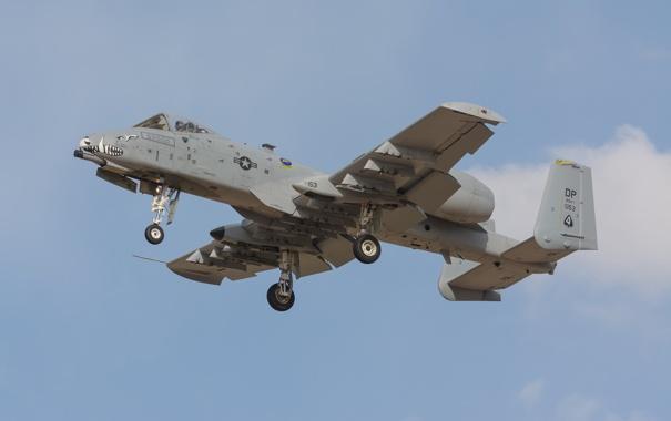 Фото обои штурмовик, A-10, Thunderbolt II, одноместный