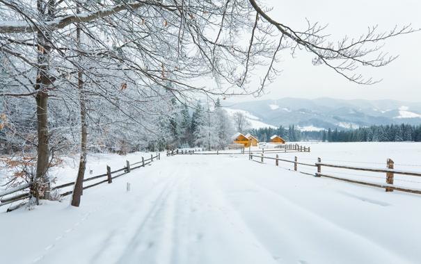 Фото обои зима, дорога, лес, снег, деревья, горы, ветки