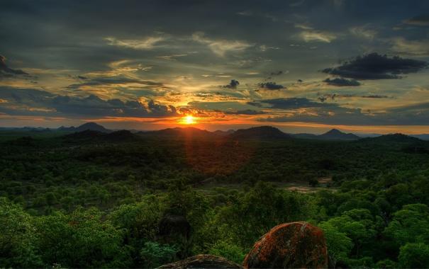 Фото обои лес, закат, sky, trees, sunset, the sun, African Sunset