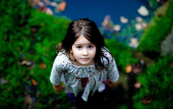 Фото обои зелень, взгляд, природа, волосы, ребенок, размытость, платье