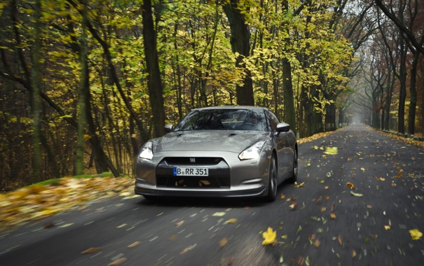Фото обои дорога, осень, лес, природа, обои, листва, скорость